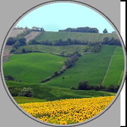 Parma e Piacenza colline